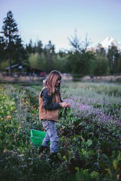 [Tumbleweed Farm, Parkdale, Oregon] via Secret Supper September by Eva Kosmas Flores | Adventures in Cooking