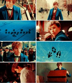Newt Scamander - You're an interesting man, Mr. Scamander. Just like your suitcase, I think there's much more to you than meets the eye.