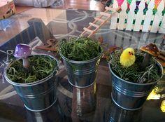 Galvanised pails with peeps, moss and mushrooms. Super Simple, Seasonal Decor, Peeps, Stuffed Mushrooms, Easter, Seasons, Craft, Spring, Plants