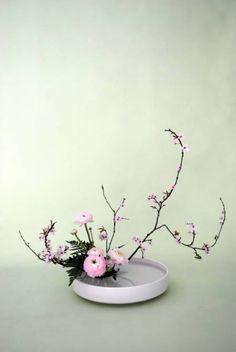 Photos Vivastreet Cours IKEBANA art floral japonais ZEN Le Havre