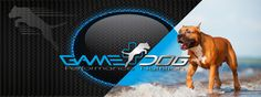 www.gamedog.eu