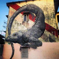 ROA in Panama #roa #streetart #graffiti #beststreetart #urbanart #art #bestgraffiti #amazingstreetart