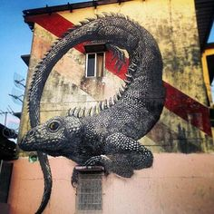 Belgian artist ROA in Panama #roa #streetart