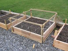 Protection for raised beds-- wooden supports, chicken wire, and zip ties. Looks better than PVC, for sure. Could do this and somehow add variable-height topcovers too. (also, how to combine with cold frame covers? Chicken Wire Fence, Chicken Garden, Veg Garden, Garden Fencing, Garden Boxes, Garden Landscaping, Fenced Garden, Garden Oasis, Fruit Garden