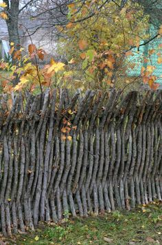 branch fence - I have just fallen in love.