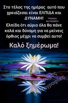 Good Night, Random, Videos, Quotes, Life, Beautiful, Decor, Nighty Night, Quotations
