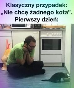 Polish Memes, Weekend Humor, Best Memes Ever, Funny Memes, Jokes, Cool, Reaction Pictures, Real Life, Haha