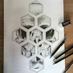 Latest piece...honeycomb vibe #art #draw #drawing #pencil #illustration #skull #design #tattoo #sketch #SketchOfTheDay