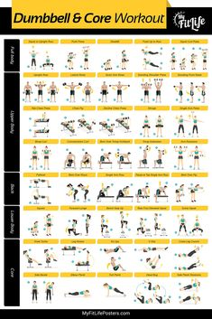 "My Fit Life Gym Dumbbell and Core Workout Poster Laminated :: Illustrated Guide with 40 Exercises for Full Body and Core : Hang in Your Home or Gym, for Men & Women, 24"" x 36"