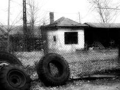'Across the Fence' von mimulux bei artflakes.com als Poster oder Kunstdruck $16.63