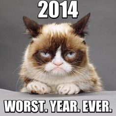 #grumpy #cat #new #year #2014