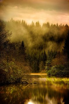 Autumn morning mists, Loch Ard, Trossachs, Scotland