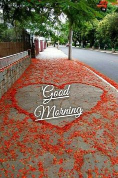 Beautiful Morning Pictures, Good Morning Sunday Images, Morning Quotes Images, Morning Greetings Quotes, Morning Love Quotes, Good Morning Flowers, Good Morning Good Night, Good Morning Wishes, Happy Weekend Quotes