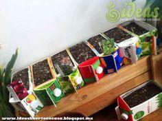 Reutilizar los envases tetrapack | Ideas para tu Huerto en Casa