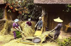 Life on the Farm in Old Japan Old Pictures, Old Photos, Vintage Photos, Old Photography, Artistic Photography, Era Meiji, Japanese Farmer, Japan Landscape, Bible Images