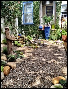 Back Yard makeover... Removed lawn and replaced it with gravel paths... Added succulent beds.... I really wanted to go towards a more drought tolerant landscape but did not want to lose the lusciousness of the green scape... I think it was successful....