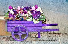 Purple Wheelbarrow by Maria Coulson
