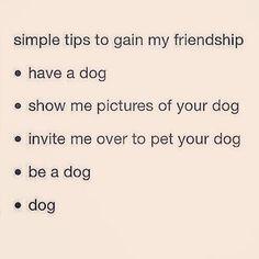 Ways to gain my friendship!