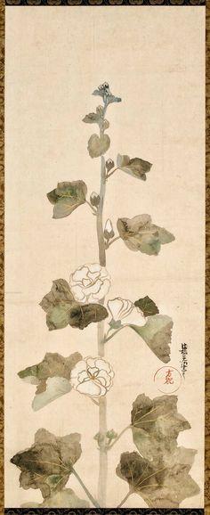 White Hollyhocks. | Ogata Korin. Japanese hanging scroll. Edo period. Eighteenth century. Freer and Sackler Galleries
