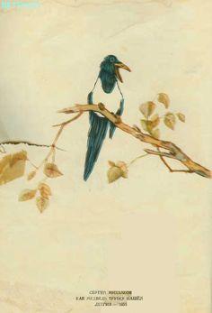 1956 – Un zâmbet de copil… Painting, Art, Art Background, Painting Art, Kunst, Paintings, Performing Arts, Painted Canvas, Drawings