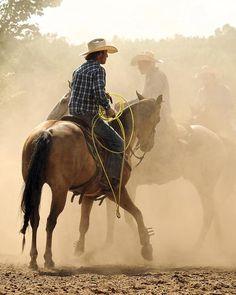 cowboys!  (Source: 4qh4)