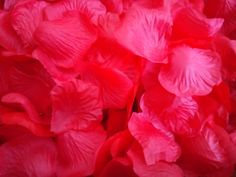 RED SILK fabric ROSE petals from bridal.table.veil
