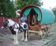 Image Search Results for gypsy