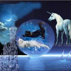 Nuit magique : les chats et la licorne  En vente sur : http://www.alittlemarket.com/boutique/caprices_de_chats-100332.html