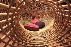 Architectura - 24H ontwerpt ontspanningscentrum met bamboe