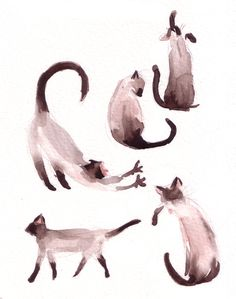 Watercolor cats by matildarose
