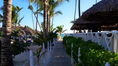 @bahiaprincipe Ambar #dominicanrepublic REBOOKED can't wait to return to this amazing beautiful paradise resort!