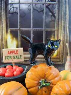 Mini Black Cat in our miniature Halloween fairy garden.