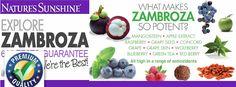 Zambroza - the power of mangosteen