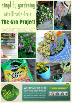 1000+ Images About Gardening Inspiration On Pinterest | New Class Gardening And Projects