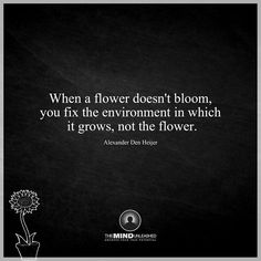 The environment...not the flower