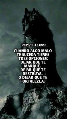 Positive Phrases, Motivational Phrases, Rose On Fire, Love Qutoes, My Daughter Quotes, Famous Phrases, Wolf Artwork, Wolf Images, Quotes En Espanol
