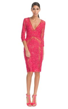 Elie Saab Berry Lace Embroidered V-Neck Dress