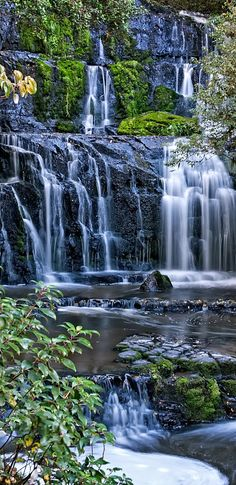 Purakaunui Falls - trip to the Catlins, South Island, New Zealand