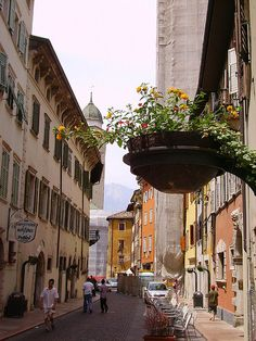 Trento, Trentino-Alto Adige, Italy with STELO planter
