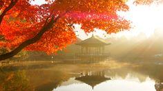【行ってみたい場所】            富士フイルムフォトサロン大阪 | 富士フイルムフォトサロン