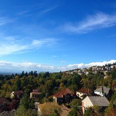 Forest Heights #forestheights #view #autumn #bluesky #nofilter #iphoneonly #purecolor #portland