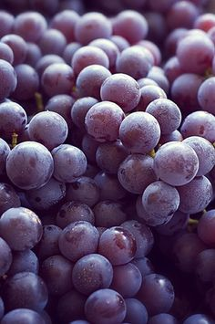 http://www.oilwineitaly.com Grapes are always a healthy and delicious snack! #choosesargentocheese