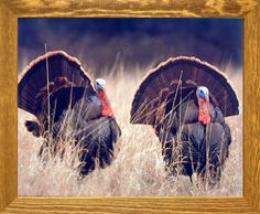 Pair of Wild Turkeys Animal Bird Hunting Wall Decor Brown…
