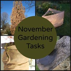 November Gardening Tasks - Activities to get your garden ready for the cold winter months.