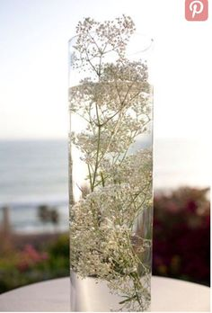 Submerged baby's breath, inspiration for mobella events, wedding planner orlando, wedding planner st Diy Outdoor Party, Diy Outdoor Weddings, Outdoor Wedding Decorations, Diy Party, Spring Decorations, Party Ideas, Table Decorations, Theme Ideas, Wedding Table Centerpieces