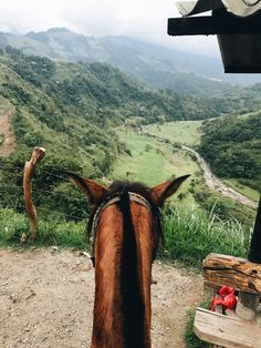 Wondering where to Stay in Salento? 6 Best, Unique Hotels in Salento Glamping, Carrera, Woman Riding Horse, Train Route, Beste Hotels, Brown Horse, Unique Hotels, South America Travel, Aerial Photography
