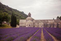 Sénanque Abbey, France. A road trip in images through Provence & The Côte D'Azur: Aisa Araújo Photography