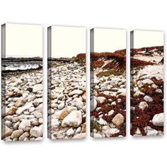 ArtWall Linda Parker A Pebble Beach 4-Piece Gallery-wrapped Canvas Set, Size: 36 x 48, White
