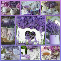 Collage by Miss Katarina Love Collage, Color Collage, Beautiful Collage, Beautiful Flowers, Lavender Cottage, Lavender Fields, Lavander, Happy Birthday Flower, All Things Purple