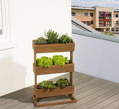 Mein Balkon: Gemüse Im Schatten Anbauen - Geht Das ... Gemuse Auf Dem Balkon Hochbeet Garten